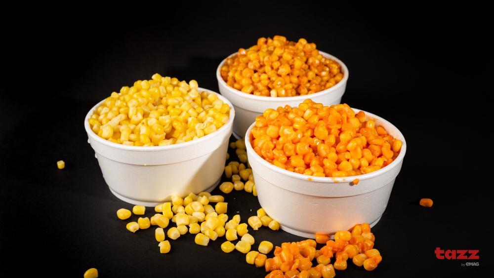 Salti Corn cover