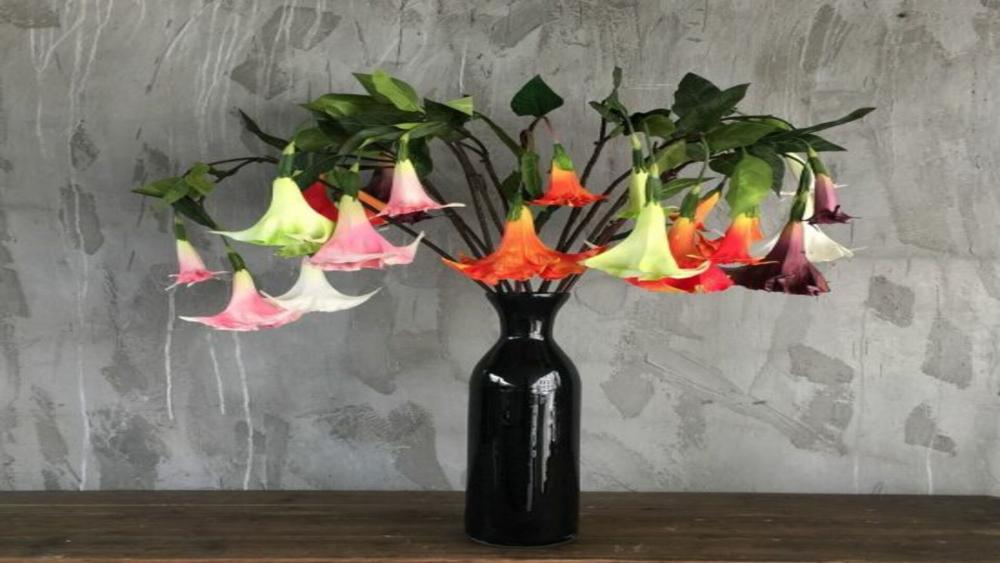 Sushi Maki Box cover
