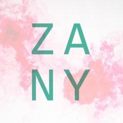 ZANY logo