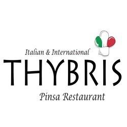 Thybris logo