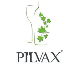 Pilvax logo