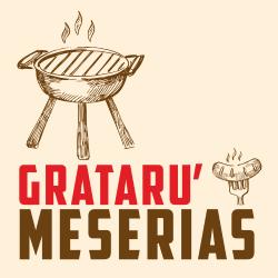Gratarul Meserias Orhideea logo