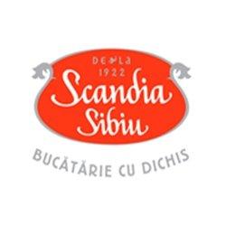 Scandia Sibiu Baneasa logo