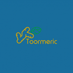 Toormeric logo
