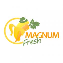 Magnum Fresh logo