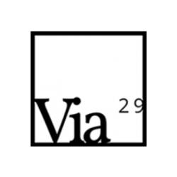 Via 29 logo