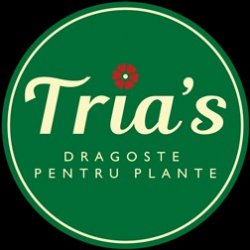 Floraria Tria`s Vitan logo