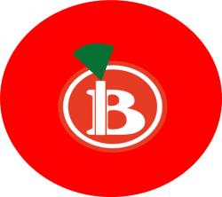 B Delivery Viziru logo
