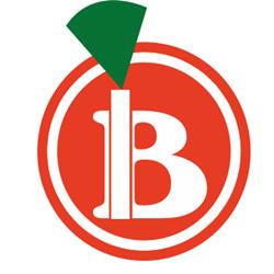B Delivery Dedeman logo