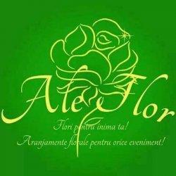 Ale Flor - Flori pentru inima ta logo