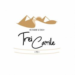 Restaurant & Terasa Trei Camile  logo