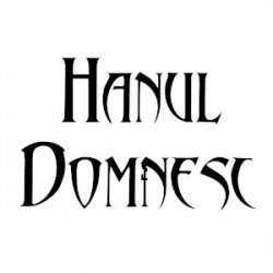 Hanul Domnesc CRAIOVA logo