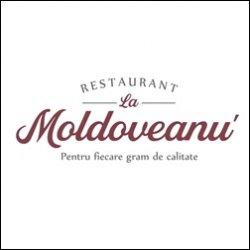 Terasa la Moldoveanu logo