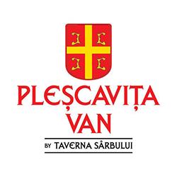 PlescavitaVan logo