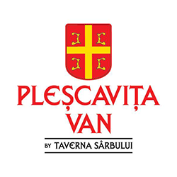 PlescavitaVan Militari logo
