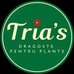 Floraria Tria`s Valea Oltului logo