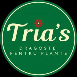 Floraria Tria`s Lujerului logo