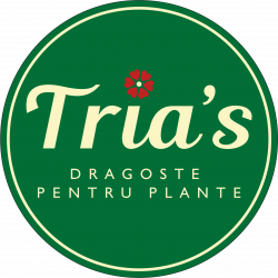 Floraria Tria`s Mosilor logo