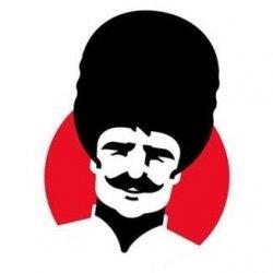 Vladislav Grill logo