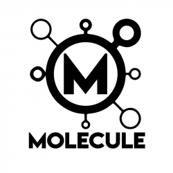 THE MOLECULE EFFECT logo
