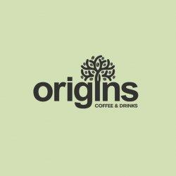Origins Centru logo