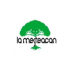 La Mesteacan logo