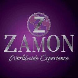 Zamon logo