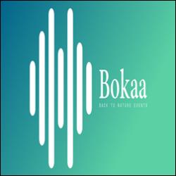 Bokaa logo