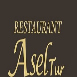 Restaurant AselTur logo