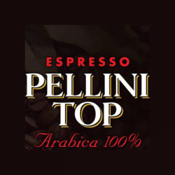Pellini Evolution logo