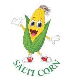 Salti Corn logo