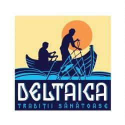 Deltaica logo