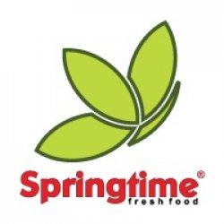 Springtime Floreasca logo