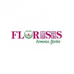 Florarie Cluj Florisis logo