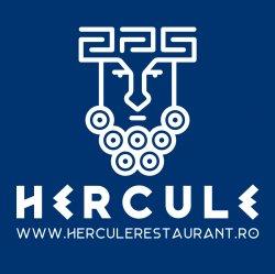Hercule Bacau logo