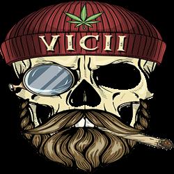 Vicii Shop - Botosani logo
