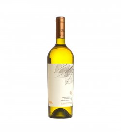 ISSA - Chardonnay Barrique 75 CL 13% image