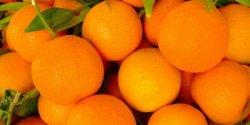 portocale calitatea.I 1kg