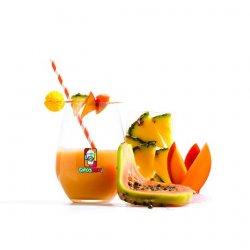 Smoothie Tropical Mix (Ananas, Papaya, Mango)