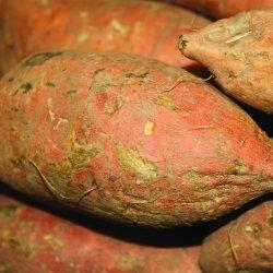 Cartofi dulci BIO 100g MP