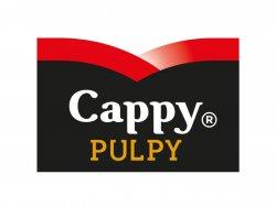 Cappy Pulpy Grapefruit image