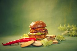Hungerr of the demon burger – P.I.C.A.N.T. image