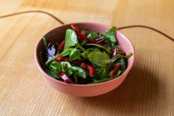 Salată de Frunze image