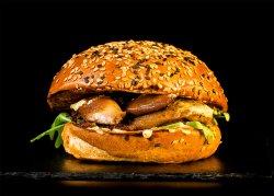 Pulled Duck Burger & Crispy Fries image
