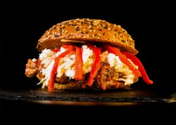 Burger Major Tom Turkey & Crispy Fries image
