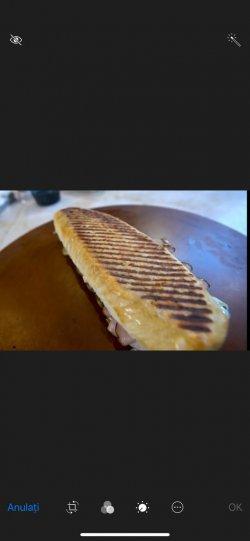 Sandwich Toast cu piept de pui