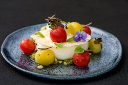 Burrata with cherry tomatoes & truflles   image