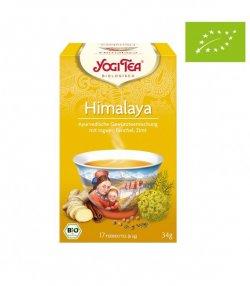 nadr-483377 ceai eco yogi cu ghimbir fenicul si scortisoara 2g*15