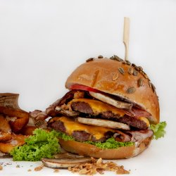 Burgerul Visator (mushroom)  image