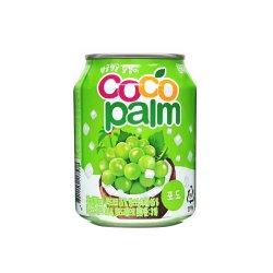 Coco Palm image